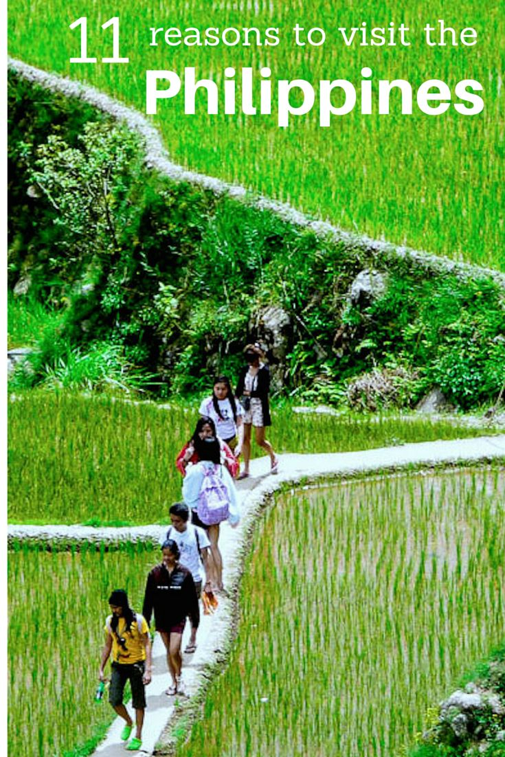 The Philippines is a real gem of a destination. We spent 3 months travelling in this beautiful country and found many highlights, including this one - the rice terraces of Banaue. Read here for the other 10!