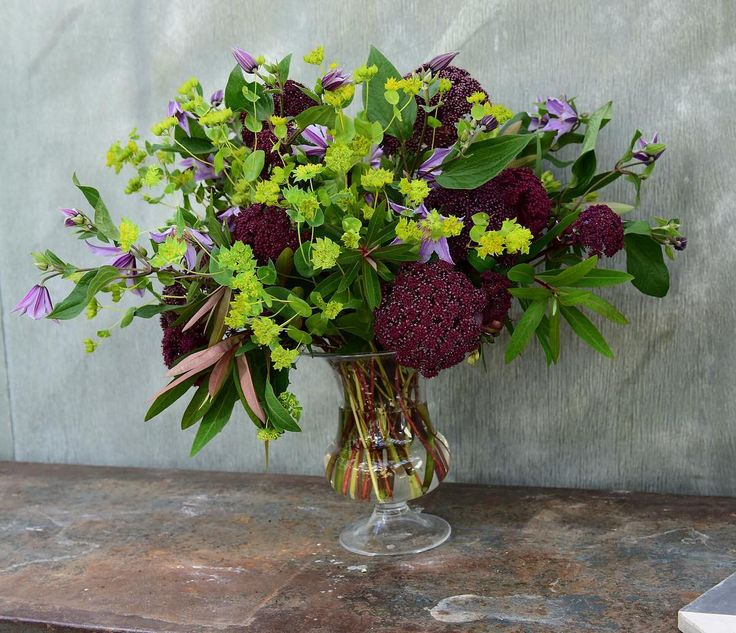 Buplerum, Angelica gigas and Clematis in 'Old English'-vase #flowers #blomster…