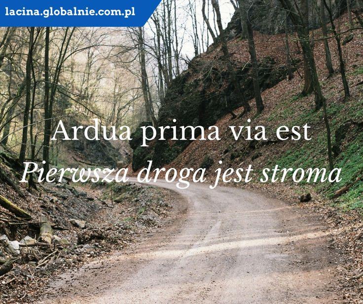 "Sentencje łacińskie. Łacina: ""Ardua prima via est"". Polski: ""Pierwsza droga jest stroma"". http://lacina.globalnie.com.pl/"