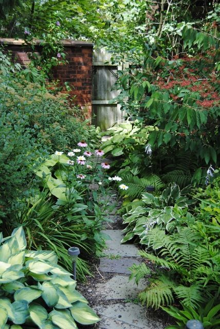17 best ideas about stone garden paths on pinterest mosaic walkway walkway ideas and stepping - Trees for shade in small spaces concept ...