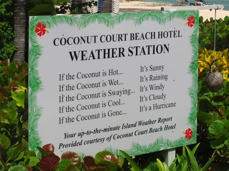 How to check the weather.... #Barbados style