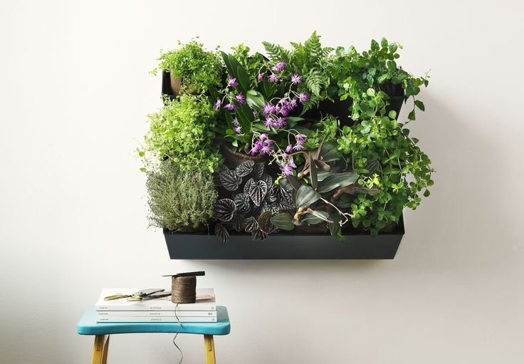 Suomessa suunniteltu ja valmistettu HomeGrow WALL on kasviseinä, jolla toteutat helposti kauniin vertikaalisen puutarhan. Kotikasviseinässä kasvatat helposti niin yrttejä kuin viherkasvejakin.