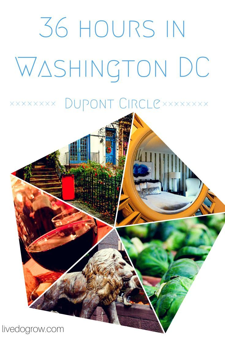 Looking for the perfect everyday wellness getaway? Spend 36 hours in Washington DC, with 6 ideas of things to do in Dupont Circle.