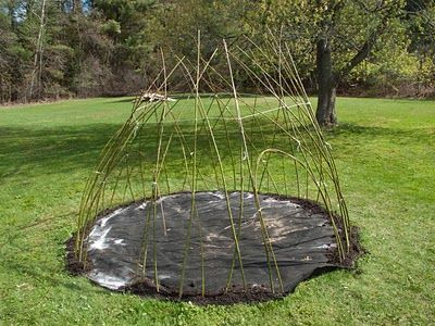 How to Build a Living Willow Dome - good tutorial