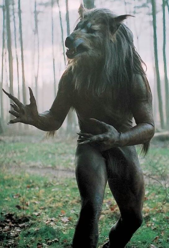 """Monsters & Werewolves 