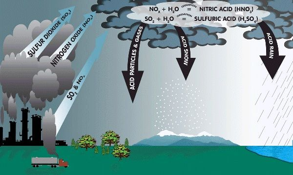 Acid Rain & Ozone Depleting Substances Acid Rain Acid rain (Ph < 5.6) is caused