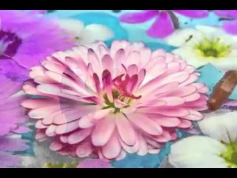 ▶ Liberarmi dalla rabbia - Meditazione guidata - YouTube