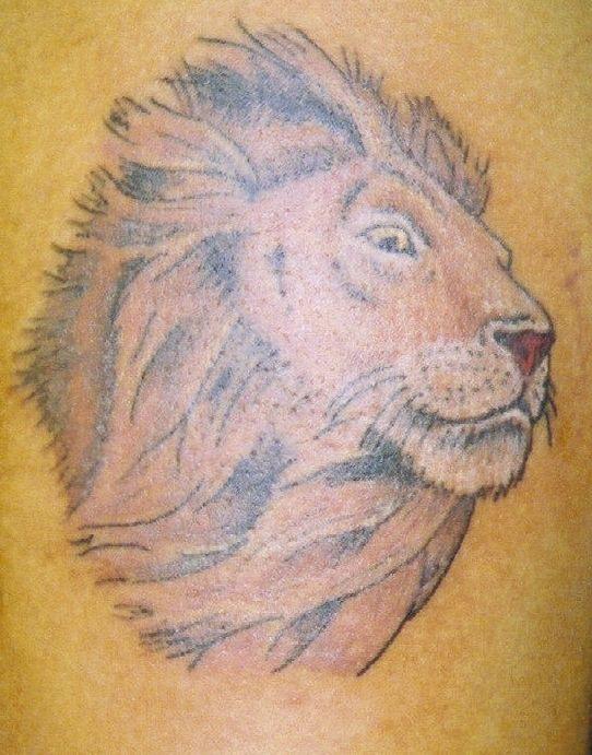 Pin Aslan Dovmesi Bacak Lion Tattoos on Pinterest