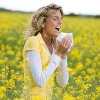 quercetine allergie rhinite