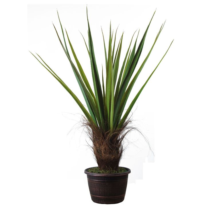 Laura Ashley Realistic Silk Giant Agave Plant with Contemporary Planter, Brown