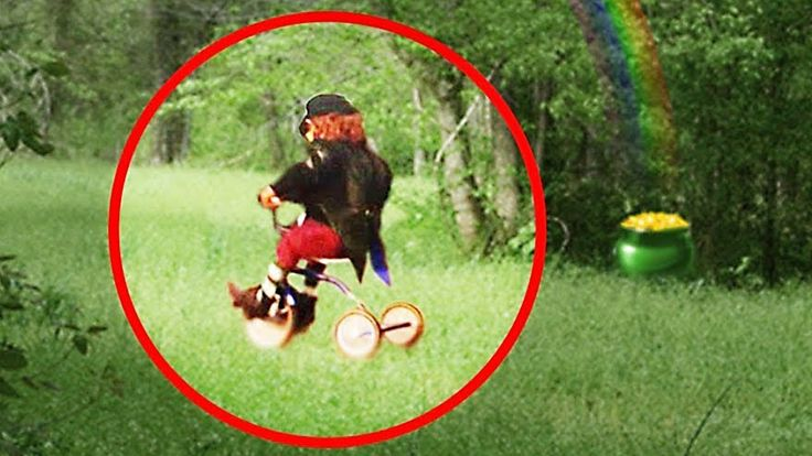 5 REAL LEPRECHAUN CAUGHT ON CAMERA & SPOTTED IN REAL LIFE!