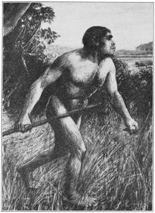 Piltdown Man - Wikipedia, the free encyclopedia