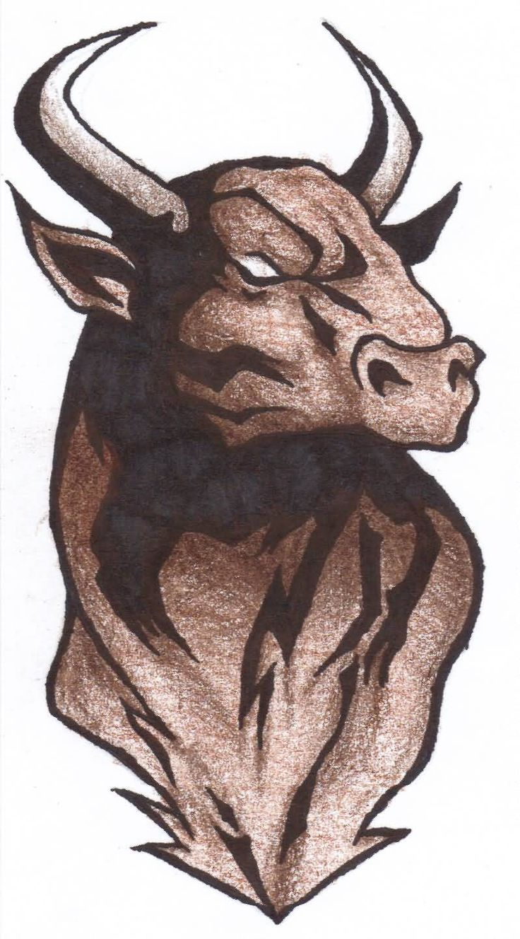 Pics photos taurus tattoos bull tattoo art - Impressive Bull Tattoo Design