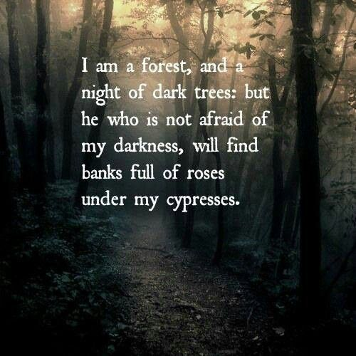 Forest Quotes: Nature Quotes