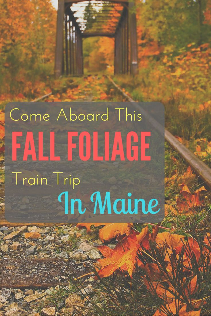 maine, new england, travel, usa, vacation ideas, travel ideas, travel inspiration, bucketlist, weekend, fall, autumn, october, foliage, road trip, scenic