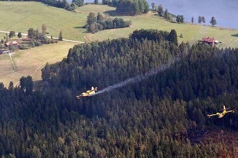 Omkring 25 hus har brunnit ned i skogsbranden i Västmanland. Det är fler än vad vad räddningstjänst och länsstyrelsen tidigare räknat med.