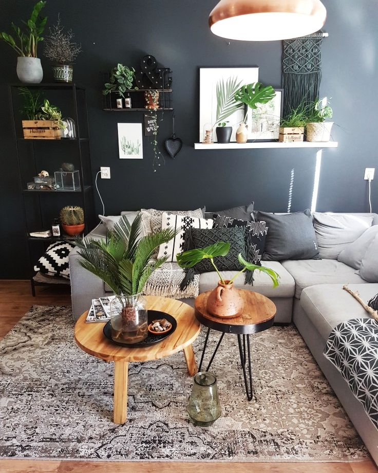 Living Room Jungle 26 best my urban jungle house ❤ images on pinterest | jungle