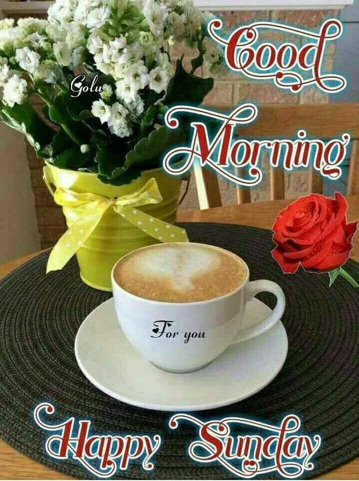 Good Morning Coocl Golu Morning For You Happy Sunday