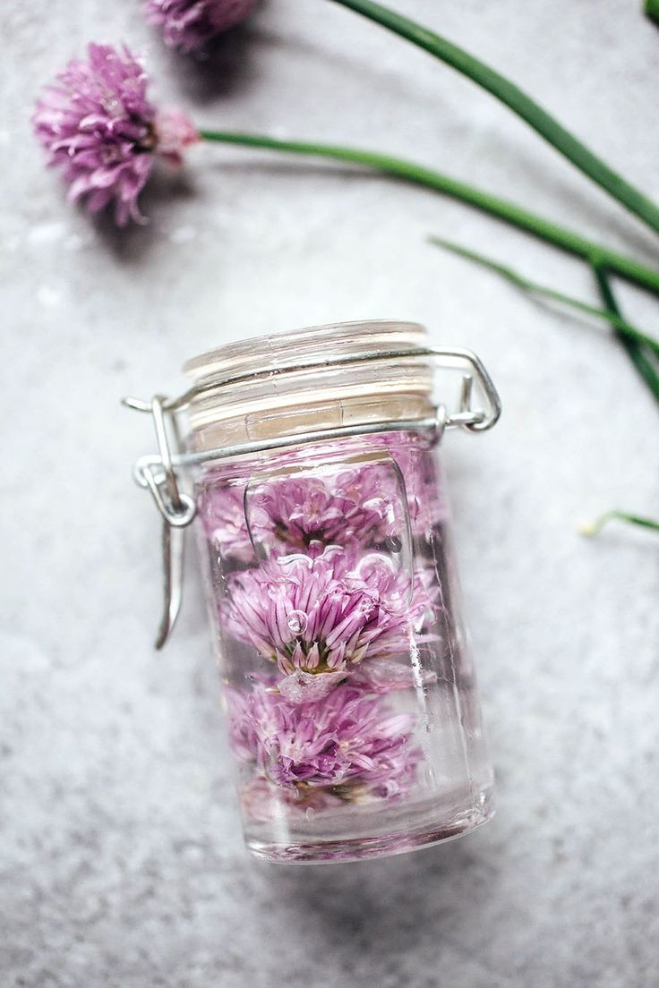 Two-Ingredient Homemade Chive Blossom Vinegar | This infused vinegar is the perfect spring project that works perfectly in homemade salad dressings or anywhere you use vinegar!
