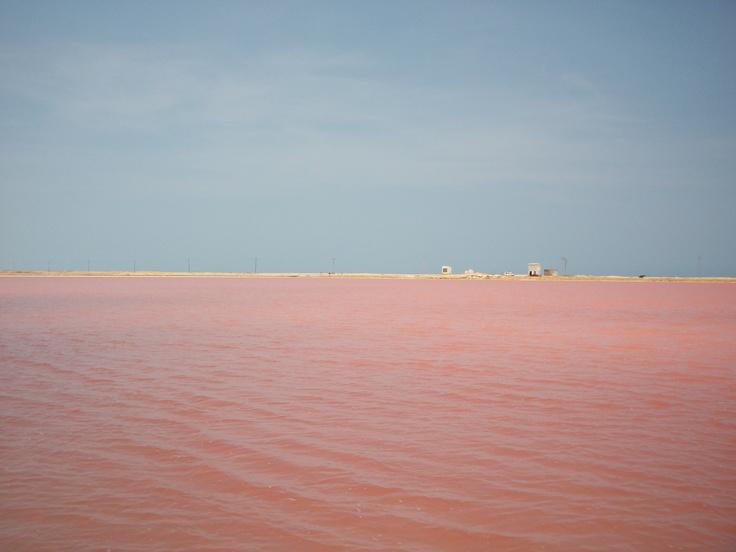Manaure...Mar rosa, cielo azul