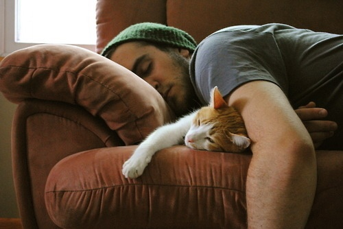 wish I could be doing this right now... CAN'T SLEEP.: Cats, Eye Candy, But, Animals, Cat Nap, Pet, Hot Guys, Boy, Man