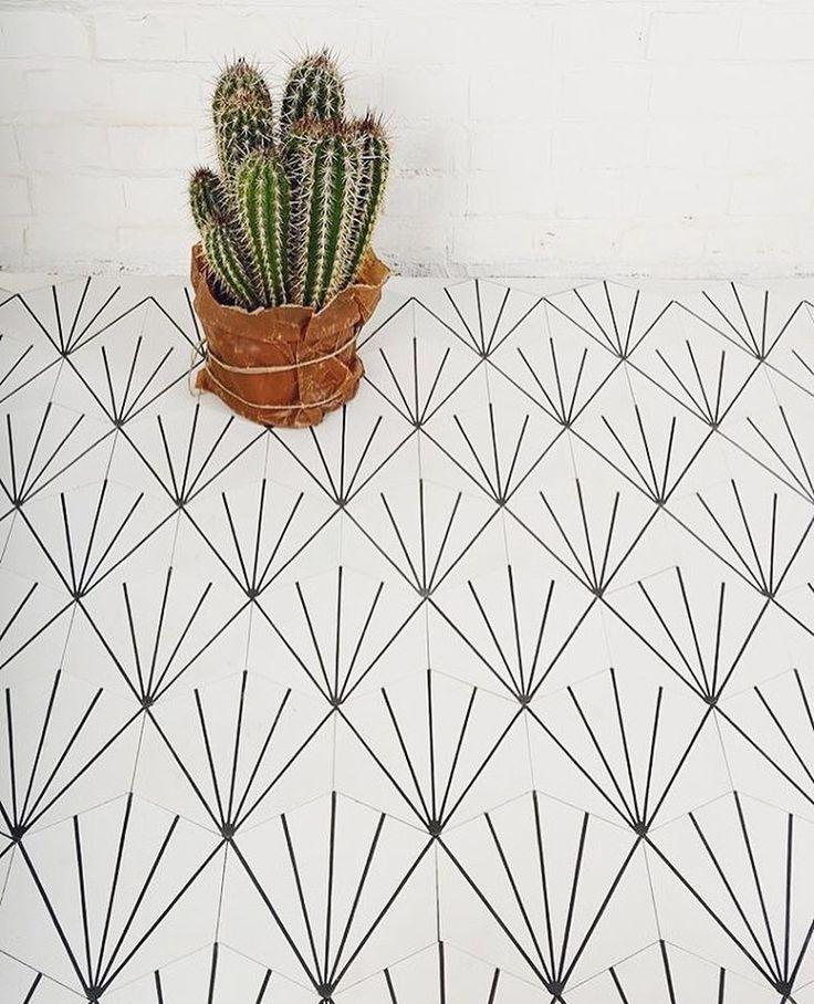 Geometria ▫️ #geometricshapes #cactus #white #floor