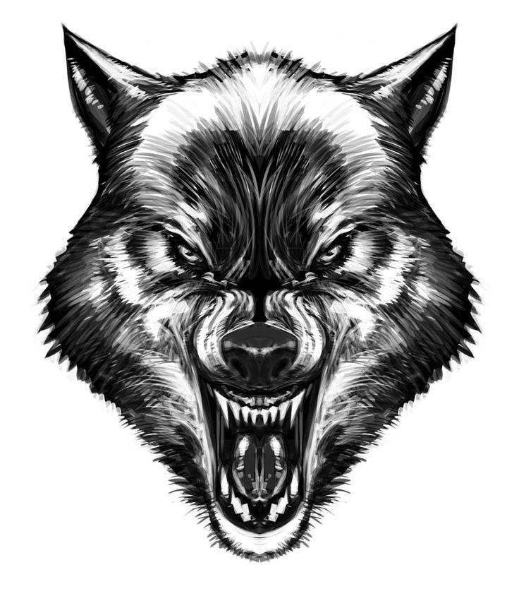 Drawings Of Wolves: Wolf By Biz02.deviantart.com On @deviantART