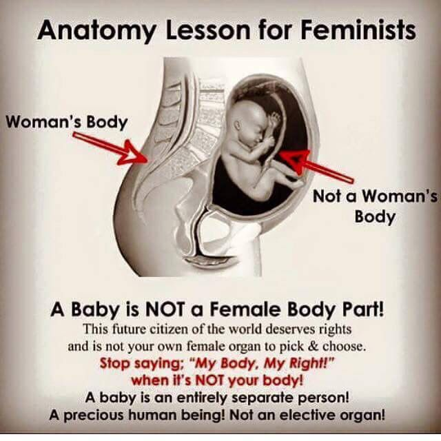 Best 25+ Unborn Baby Quotes Ideas On Pinterest   Expecting ...