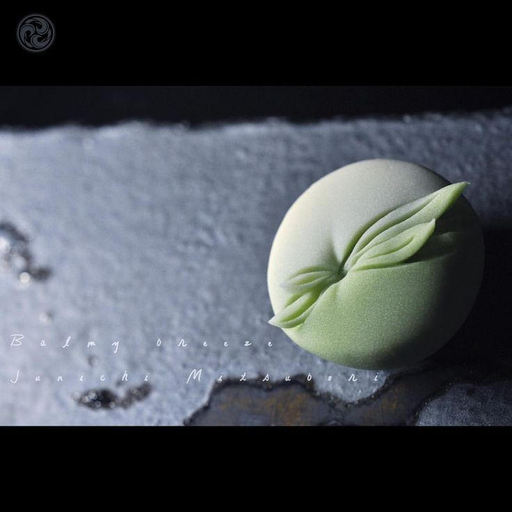 "#JunichiMitsubori #wagashi #kadou #Sweets #Artist #Japanese #Confectionery #works #instaphoto #instasweets #侘寂 #wabisabi #prayforkyushu #一日一菓 「 #菓道 #薫風 」 #煉切 #針切 wagashi of the day "" #kadou #Balmy breeze "" #和菓子 #neriki #一菓流"