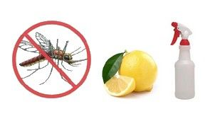 All natural mosquito spray repellent