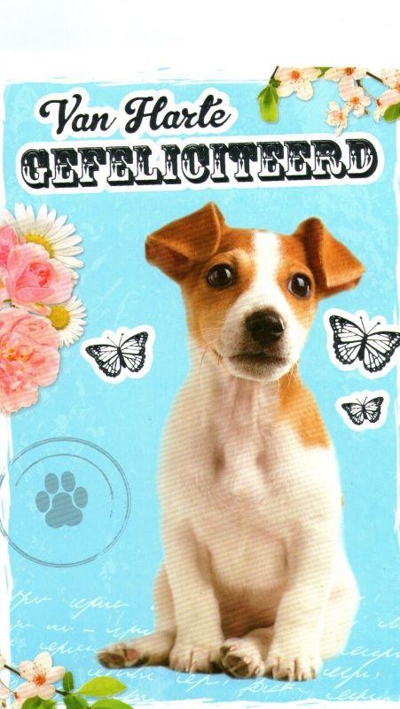 Gefeliciteerd Hond Wishes Pinterest Birthday Wishes Happy