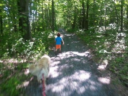 Kid and dog friendly hiking Sentiers Des Quatre Saisons Asbestos Quebec. And it's free!