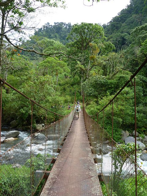 River Crossing by BikeHikeTravel, tours in Panama rainforest.