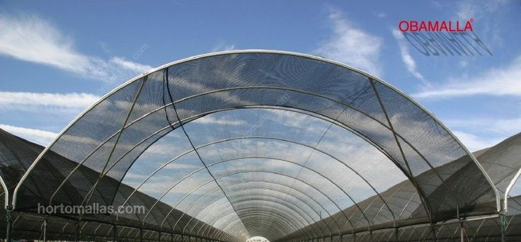 Invernadero cubierto con malla sombra OBAMALLA previene estrés hídrico.