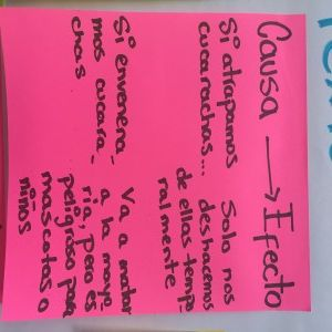 Spanish Anchor Charts for Teaching Non-Fiction Writing