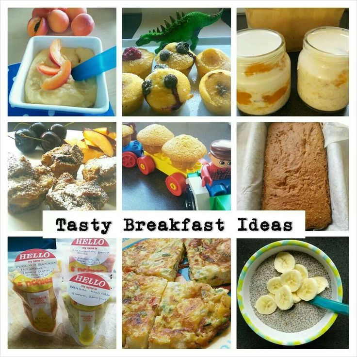 Tasty breakfast ideas - Here's a selection of some ideas to get you started. French toast or french toast muffins* Chia porridge/ pudding* Overnight oats* Peachy semolina* Breakfast muffins* Weetbix & warm milk Porridge Toast and spreads (e.g. avocado, cream cheese, nut butter or sunflower seed butter, marmite/vegemite, Ella spread*, cheese) - you can try different breads too to mix things up. My guys adore fruit bread. Eggy cheese on toast* Slice of Onbijtkoek* with a little butter Pumpkin…