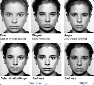 CEAP: A Ciência das Expressões Faciais das emoções e Micro-expressões: tendências da Psicologia Moderna