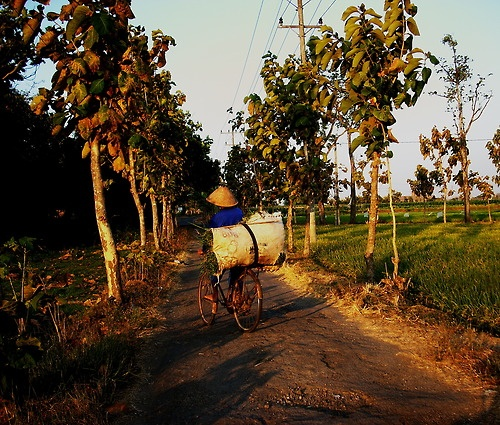 Man on bike, Solo, Indonesia