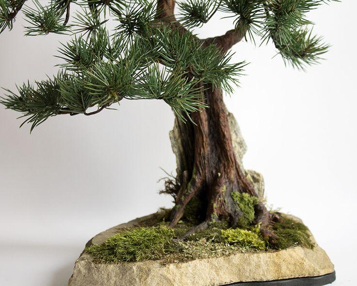 Bonsai zokei pine on the rock.