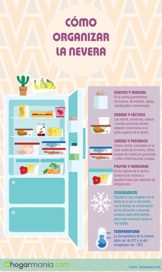 Tener organizado tu refrigerador hará que te dure mucho más tiempo la comida. | 13 Datos útiles que te servirán si quieres mudarte solo por primera vez