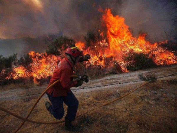 Un pompier tente d'éteindre un feu de forêt à Covilha au Portugal déclenché par la chaleur.