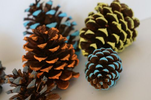 Painted Pinecones