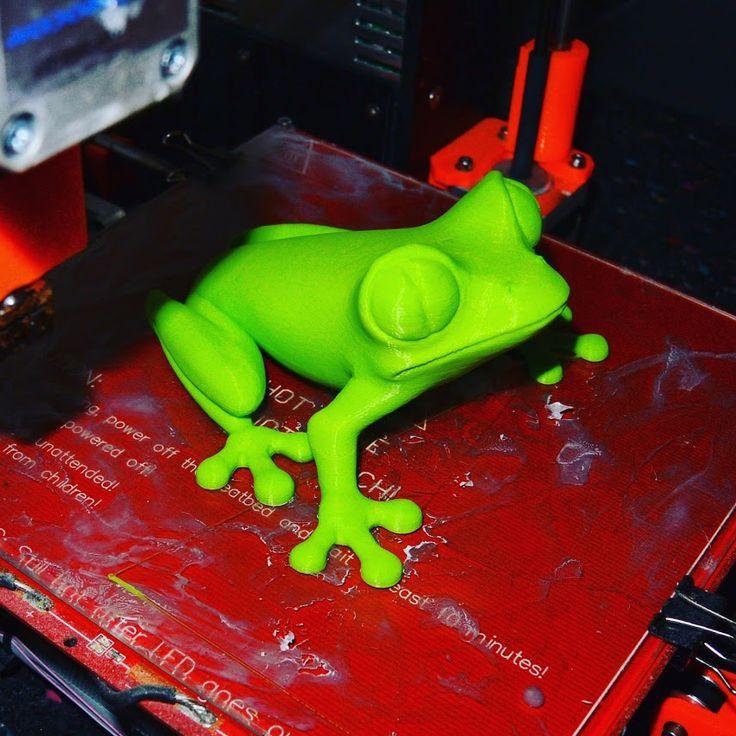 Žába krátce po vytištění. / Frog shortly after printing.