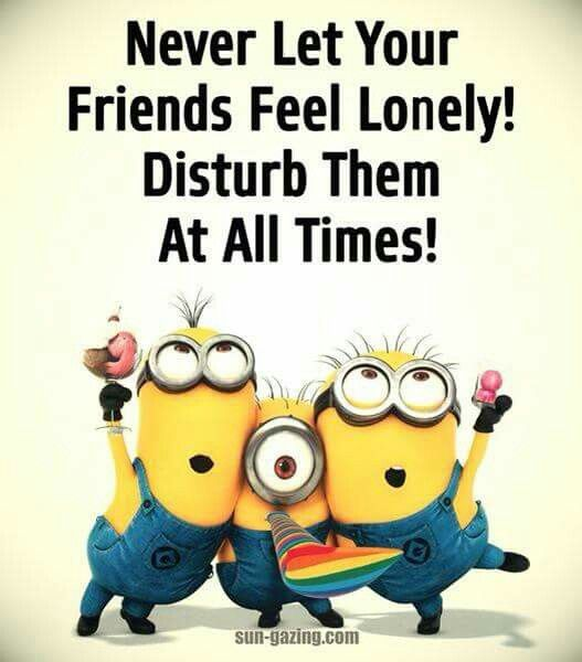 Friends Humor Quotes: 25+ Best Ideas About Lonely Humor On Pinterest
