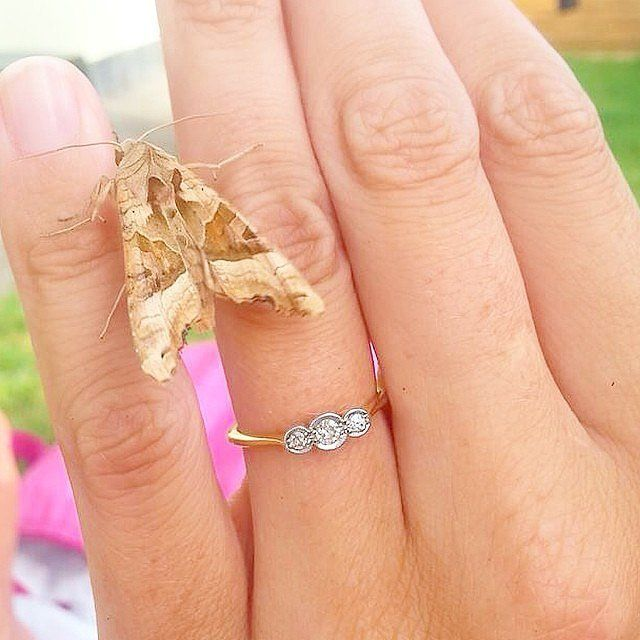 Best 25 Small engagement rings ideas on Pinterest Small wedding