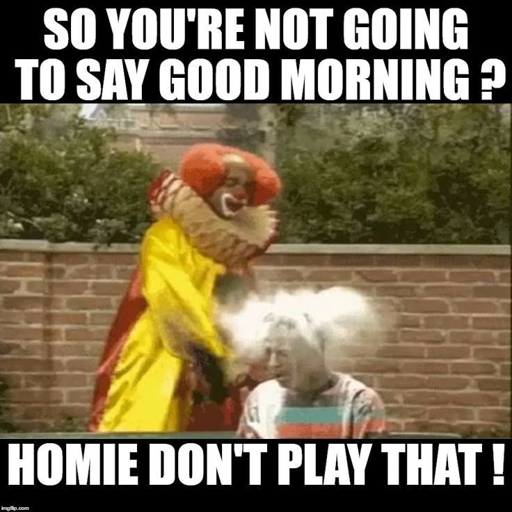 80 Good Morning Memes To Kickstart Your Day Sayingimages Com Funny Good Morning Memes Good Morning Funny Pictures Morning Memes