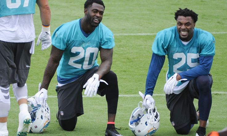 Veteran Safety Duo Should Shine For Miami Dolphins - TPS With Pro Bowlers like Ndamukong Suh, Cameron Wake and Brent Grimes garnering all the attention, it's understandable that other members of the Miami Dolphins defense will get overlooked.  That trend should change when the 2015 regular season actually kicks off next month.....