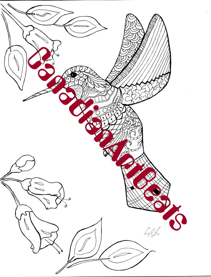 Downloadable Hummingbird Zentangle inspired Coloring Page by CanadianArtBeats on Etsy