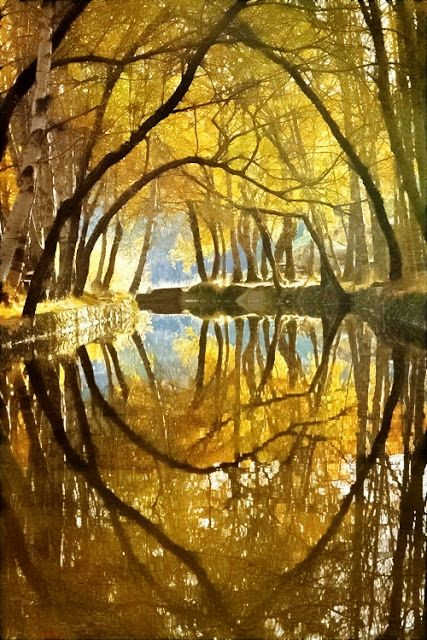 River Reflection, Serra da Estrela, Portugal