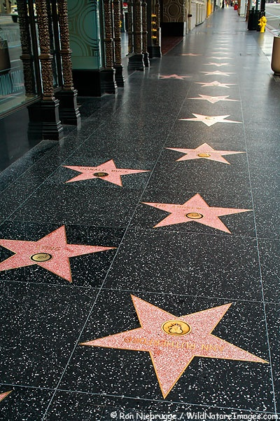 Have a star on the walk of fame/ go see the walk of fame